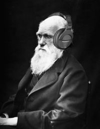 DarwinHeadphones